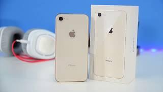 Обзор iphone 8 vs 8 Plus