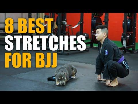 BRAZILIAN JIU JITSU: 8 BEST Stretches To Improve Flexibility & Mobility