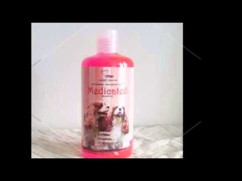 WHEN AND HOW A MEDICATED DOG SHAMPOO FOR ALLERGIES SHOULD BE USED