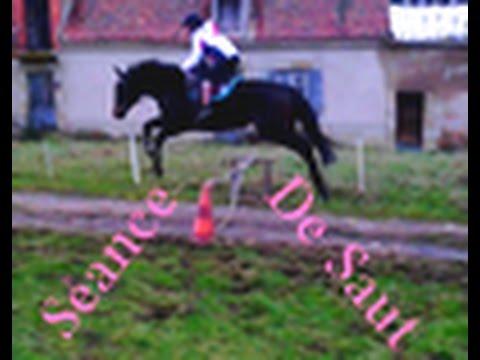 Reprise du saut d'obstacle du 08/02/15 avec Bersac 70-80 cm