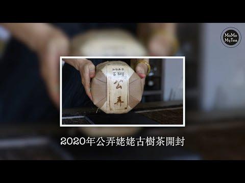 【普洱茶開箱】2020公弄大寨古樹茶