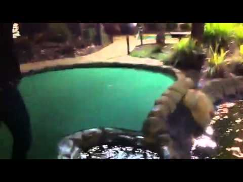 The best drunk mini-golf shot of all time