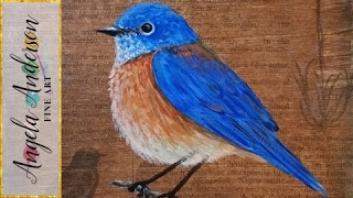 Bluebird Painting Tutorial - Free Time Lapse Acrylic Lesson #Pawgustart #Painting
