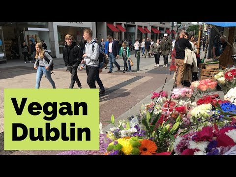 Vegan Food Tour of Dublin: Tips from a Travel Writer (2019)