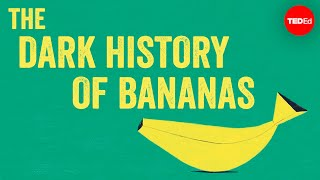 The dark history of bananas  John Soluri