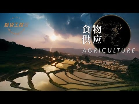 超级工程Ⅲ 第一集 食物供应【China's Mega ProjectsⅢ EP01 Agriculture】