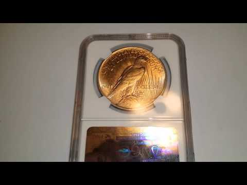 1923 Silver Peace Dollar NGC Stacks Collection