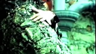 Navel - Acid Queen