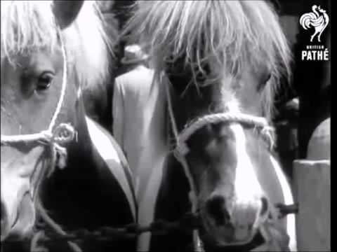 paardenmarkt1961