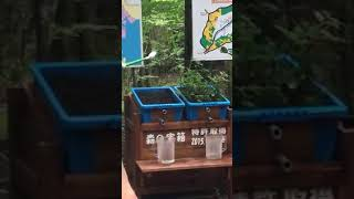 New way to save water