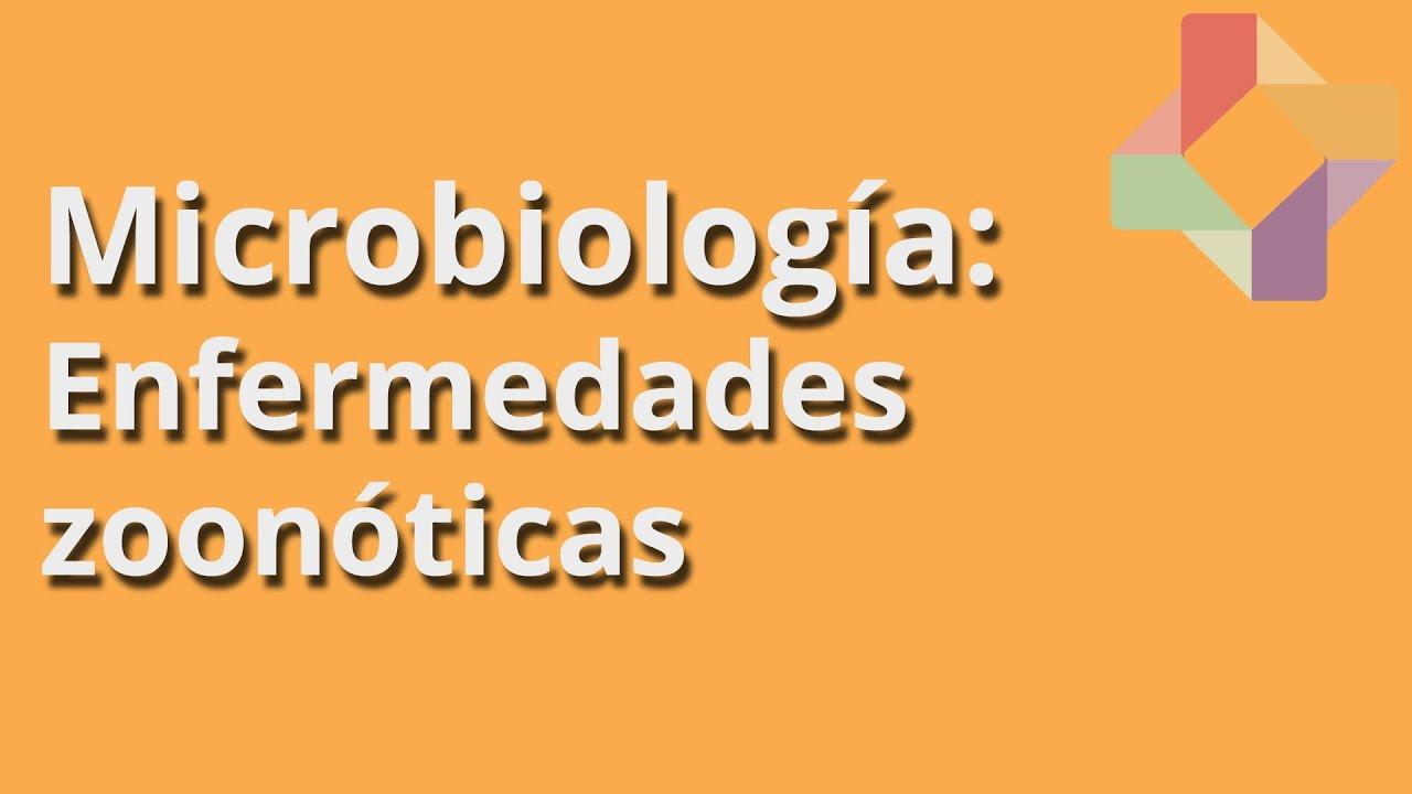 Enfermedades Zoonoticas Download