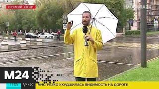 Москвичей предупредили об усилении ветра - Москва 24