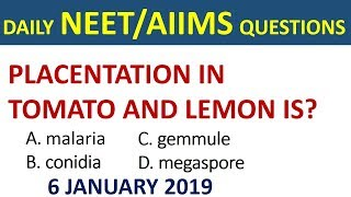 Daily NEET/AIIMS Important Questions 2019 in hindi  - neet important questions 2019 - AIIMS/JIPMER
