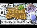 Let S Play Animal Crossing New Leaf Welcome Amiibo Ep 1 mp3