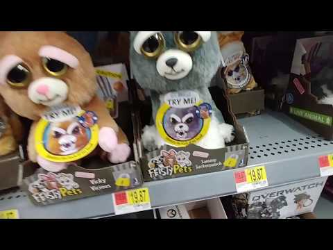 Feisty Pets At Walmart 2018