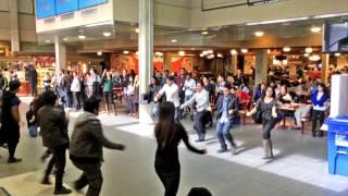 ICC World t20 Bangladesh 2014 Flash Mob - University of Manitoba@Winnipeg