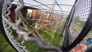 ZOO Safari w Borysewie GoPro HD Hero