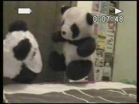panda - doble gracias mp3