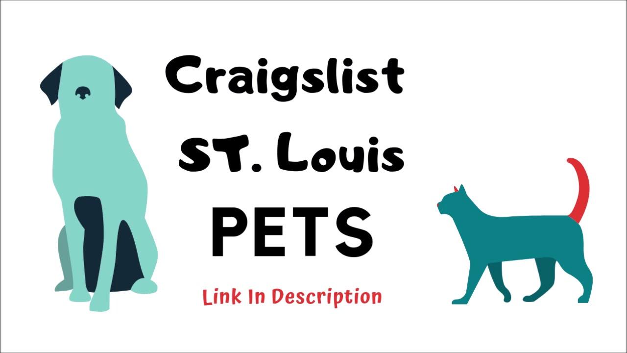 Craigslist St Louis Pets - YouTube