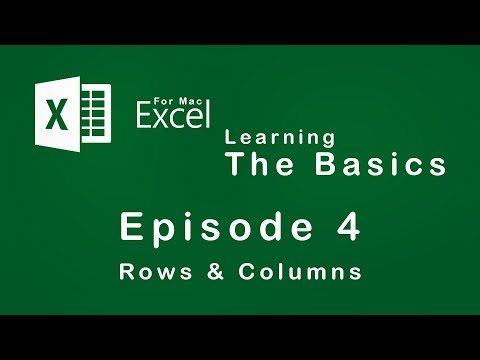Excel for Mac | Learning the Basics | Episode 4 | Rows & Columns