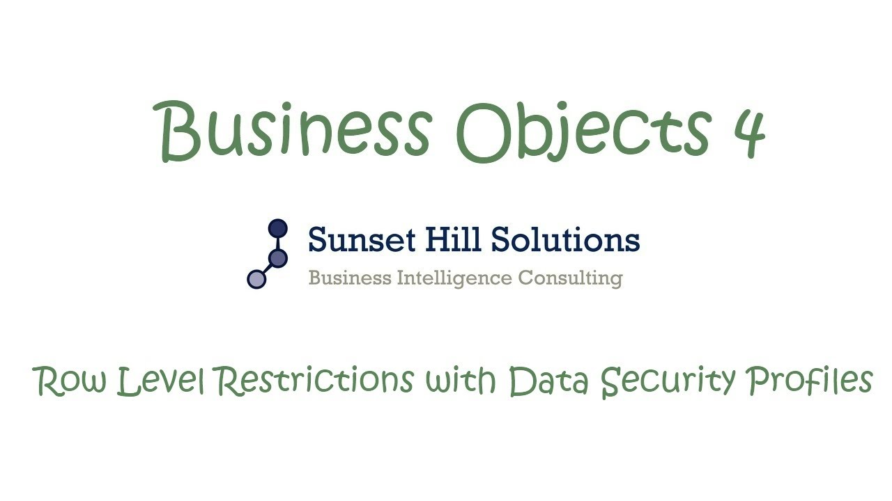 Business Objects 4x Information Design Tool Row Level Restrictions Data Security Consulting Using Profiles