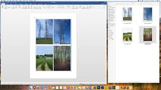 How to insert an image in word with perfect dimensions | Microsoft Word Tutorials