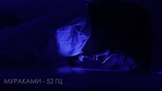 Смотреть клип Мураками - 52 Гц