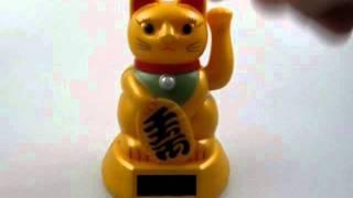 Chinese money cat
