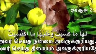 Islamic whatsapp status tamil 5