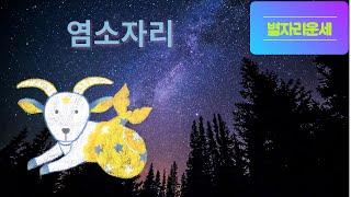 별자리운세 염소자리/12성좌운/점성술/총운/염소자리운세
