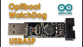программатор USBASP  Загрузчик Optiboot  Таймер WatchDog для Arduino Pro Mini и Arduino Nano