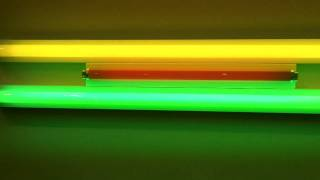 dan flavin and richard tuttle at art basel miami