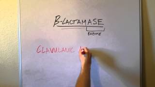 What is Beta-Lactamase and Why do we care