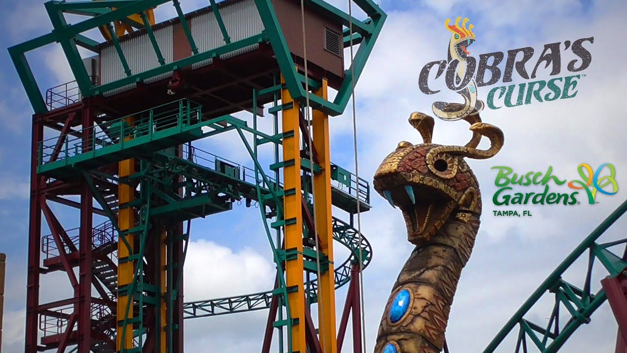 Cobra 39 s curse roller coaster construction update and - Busch gardens tampa bay cobra s curse ...