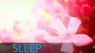 8 Hour Deep Sleep Music Inner Peace: Help Beat Insomnia, Delta Waves, Sleeping Music ☯160