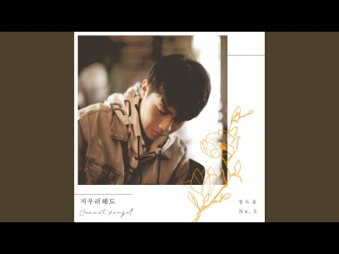 Can Not Forget / Jeong Doyun