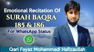 Emotional Recitation Of Surah Baqra (185 &186) | Fayaz Mohammadi Hafizaullah | WORK FOR TAWHEED |
