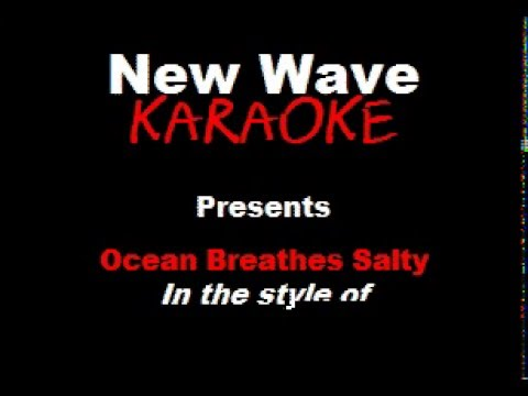 Modest Mouse - Ocean Breathes Salty - Karaoke