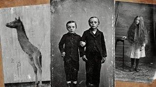 Дом странных детей (книга, фильм) и очередной поиск работы.