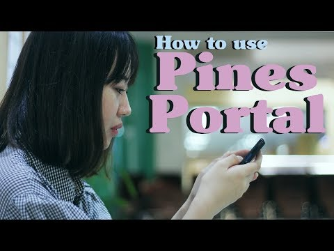 [Study English in the Philippines] Pines Academy's Portal