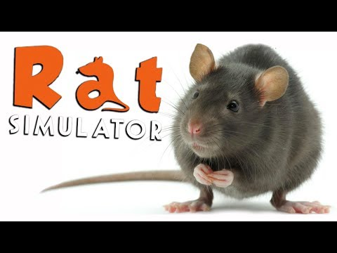 KILLER RAT!!! - Rat Simulator