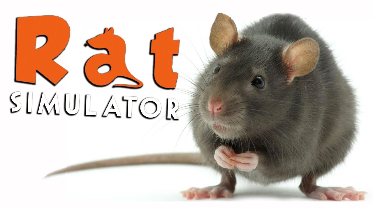 killer rat rat simulator youtube. Black Bedroom Furniture Sets. Home Design Ideas