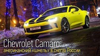 Chevrolet Camaro мускул кар с двухлитровым мотором смотреть