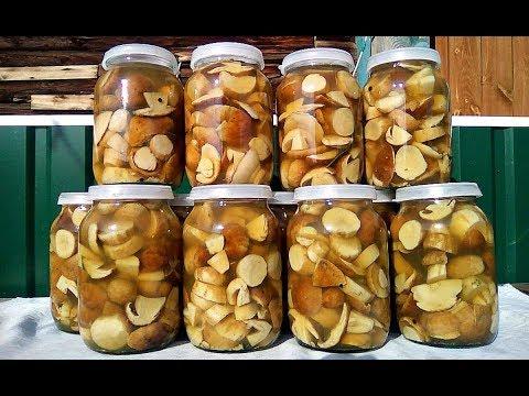 Простой и вкусный рецепт маринования белых грибов! Как замариновать белые грибы на зиму?