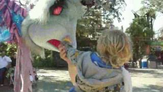 2½ Year Cooper Meets & Pets Busch Gardens' Strange Tall Magical Bird Creature @ 29 Months