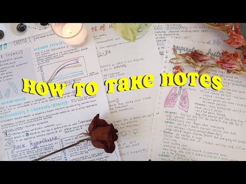 how to take PRETTY AF notes 🍓
