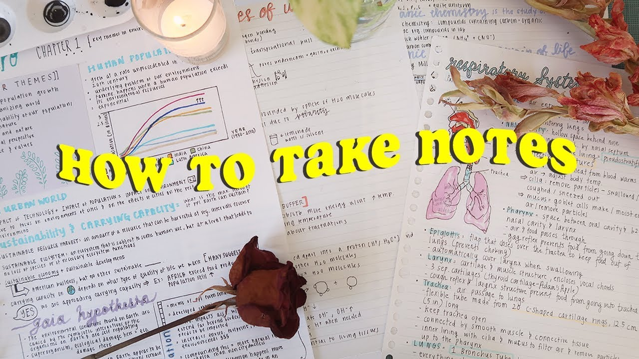 how to take PRETTY AF notes 🍓 - YouTube
