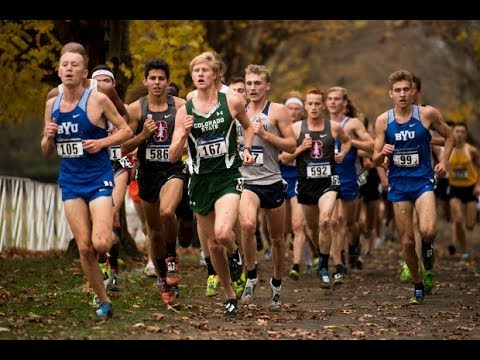 DIVISION 1 COLLEGE RUNNERS: Why Do So Many DROP OUT???