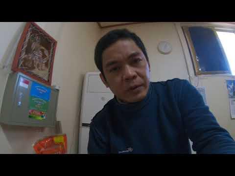 LEVELUK JR II [ Rp.2 000.000 WON ] REVIEW