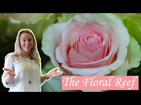 BEST OF GIG HARBOR - Floral Shop